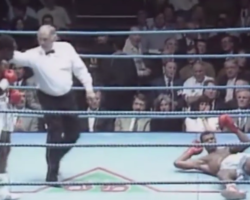 fastest knockouts in boxing history