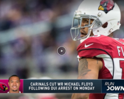 Michael Floyd, Arizona Cardinals, NFL
