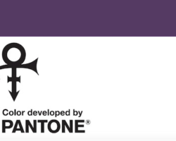 The Prince Estate and Pantone Announce a New Purplue Just for Prince